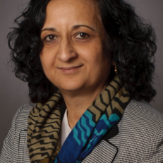 Anuradha M. Annaswamy (MIT), Transactive Control in Smart Cities