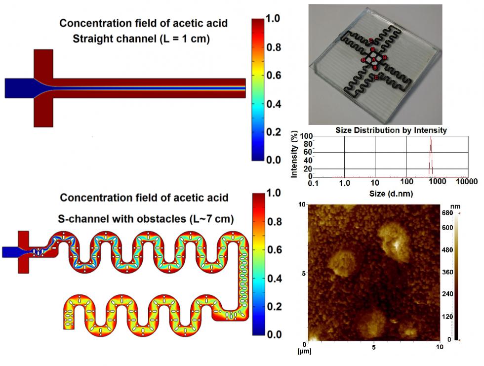 Kitosan nanoparçacık sentezi için mikro-akışkanlar-dinamiği cihazının geliştirilmesi