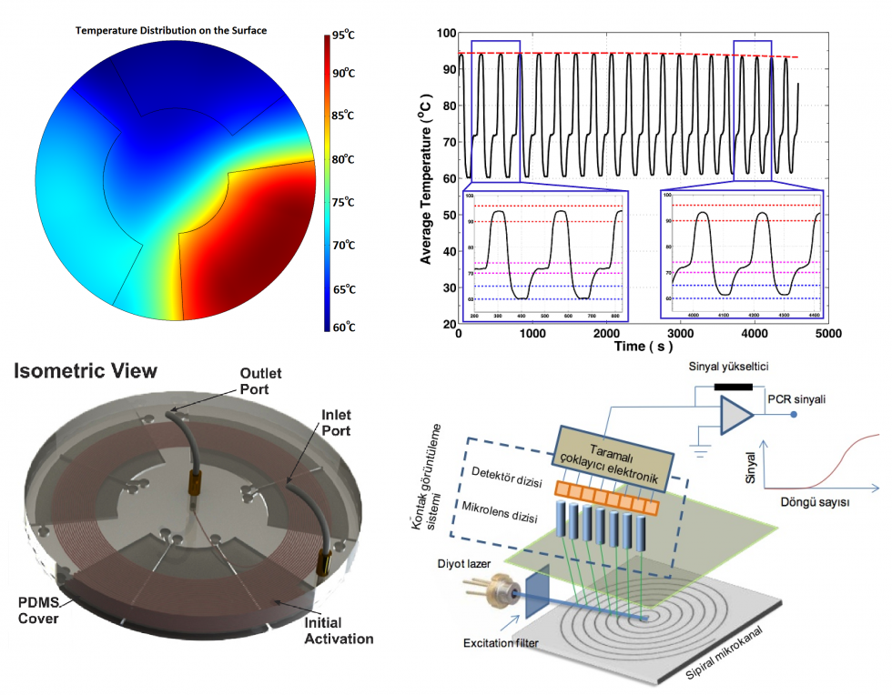 Development of a Portable Lab-on-a-Chip System for Genetic Diagnostics and Compatible HBV Diagnostic Kits